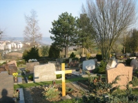 Friedhof Tarforst